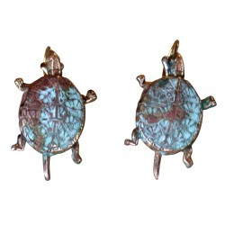 Classic Box Turtle Earrings